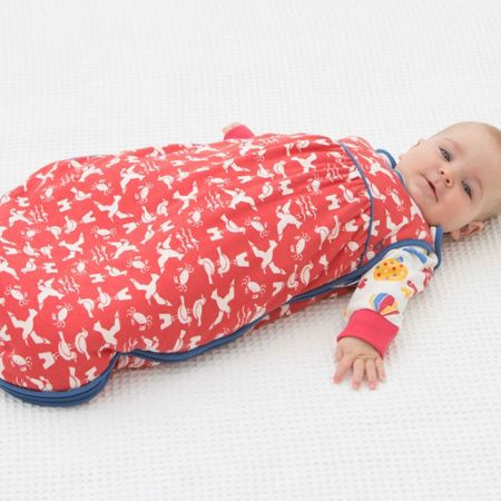 Kite Baby boys Seagull sleeping bag