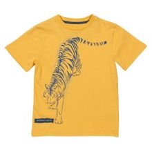 Kite Boys Tiger t-shirt