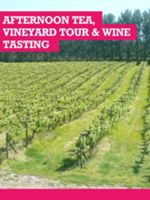 Buyagift Afternoon Tea & Vineyard Tour Wine Tasting For 2