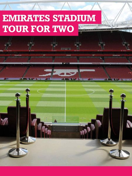 Buyagift Adult Emirates Stadium Tour for Two, Includes Bra