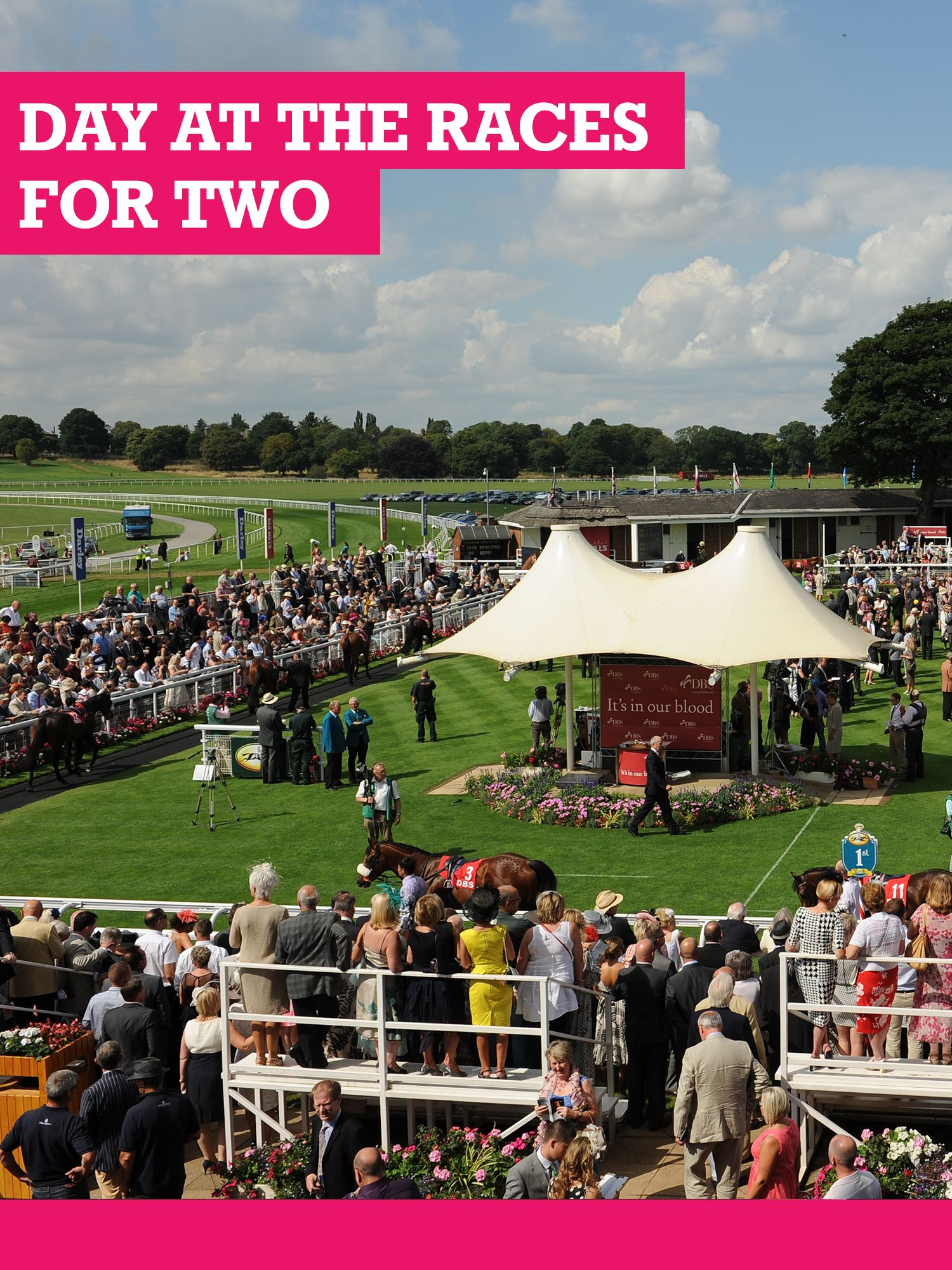 Buyagift Buyagift Classic Day at the Races for Two with Lunch