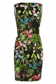 Libby Bright Floral Stretch Cotton Dress