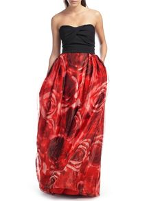 Ariella Echo Rose Print Maxi Dress