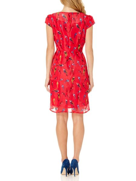 Almost Famous Organza Bird Print Dress