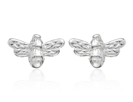 Estella Bartlett EB1181C ladies earrings