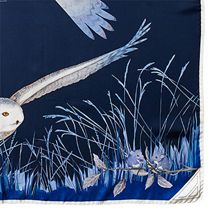 Owl in the city scarf