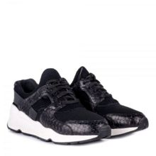 Ash Matrix bis trainers