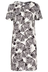 Sugarhill Boutique Lara Zebra Party Tunic Dress