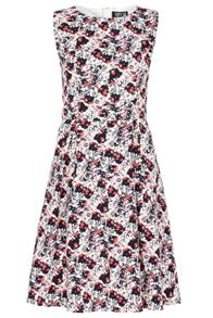 Poppy Lux Shandie Floral Fit And Flare Dress