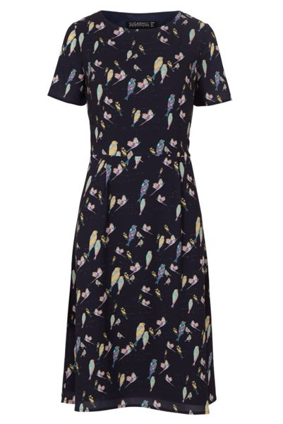 Sugarhill Boutique Maya Bright Birdie Fit And Flare Dress