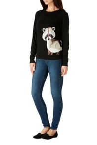 Sugarhill Boutique Nita Racoon Jumper