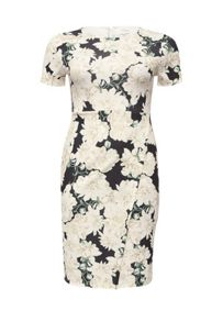 Lost Ink Curve Blossom Print Wrap Front Dress
