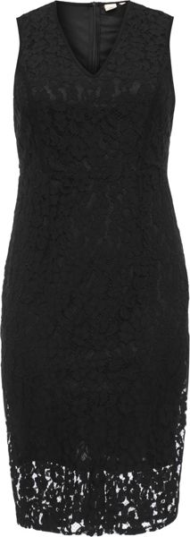 Lost Ink Curve Lace Pencil Dress
