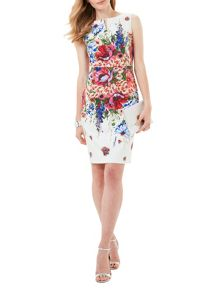 Phase Eight Louise Floral Dress
