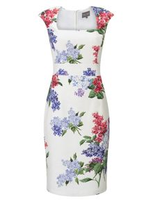Phase Eight Lilia Floral Dress
