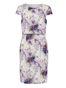 Effie Print Dress
