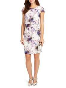 Phase Eight Effie Print Dress