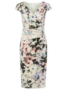 Phase Eight Carla Print Dress