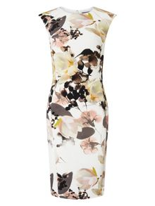 Phase Eight Mayumi Print Dress