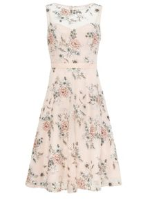 Phase Eight Prudence Embroidered Dress