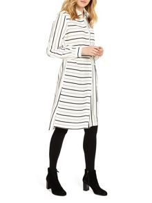 Phase Eight Naia Stripe Shirt Dress