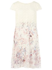 Phase Eight Florence Dress