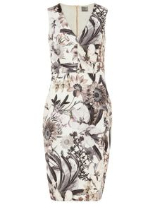 Phase Eight Botanical Print Dress