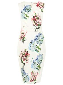 Phase Eight Hydrangea Print Dress