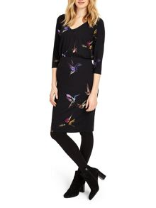 Phase Eight Bianca Bird Print Dress