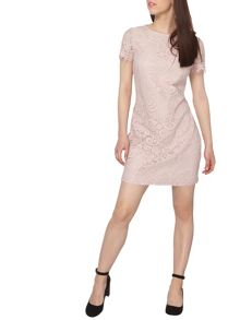 Dorothy Perkins Petite Lace Shift Dress