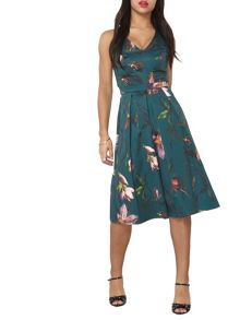 Dorothy Perkins Prom Fit and Flare Dress