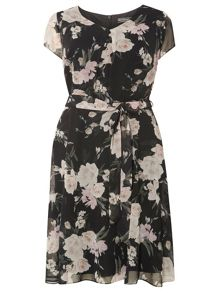 Dorothy Perkins Billie and Blossom Curve Natalie Dress