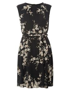Dorothy Perkins Billie and Blossom Petite Dress