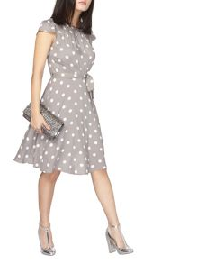 Dorothy Perkins Billie and Blossom Petite Spot Dress