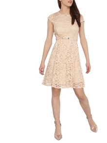 Dorothy Perkins Petite Lace Swing Dress