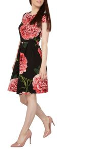 Dorothy Perkins Petite Floral Scuba Prom Dress