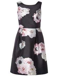 Dorothy Perkins Luxe Rose Print Prom Dress