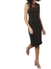 Dorothy Perkins Tall Scuba Lace Mix Pencil Dress