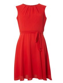 Dorothy Perkins Petite Billie and Blossom Chiffon Dress