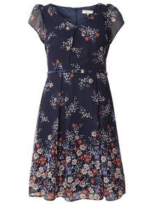 Dorothy Perkins Billie and Blossom Petite Border Dress