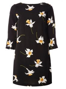 Dorothy Perkins Petite Dress