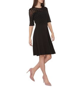 Dorothy Perkins Tall Dobbie Mesh Dress