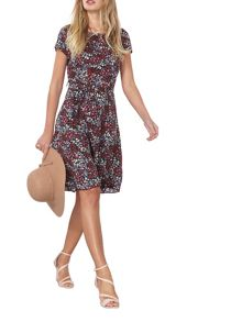 Dorothy Perkins Billie and Blossom Ditsy Dress