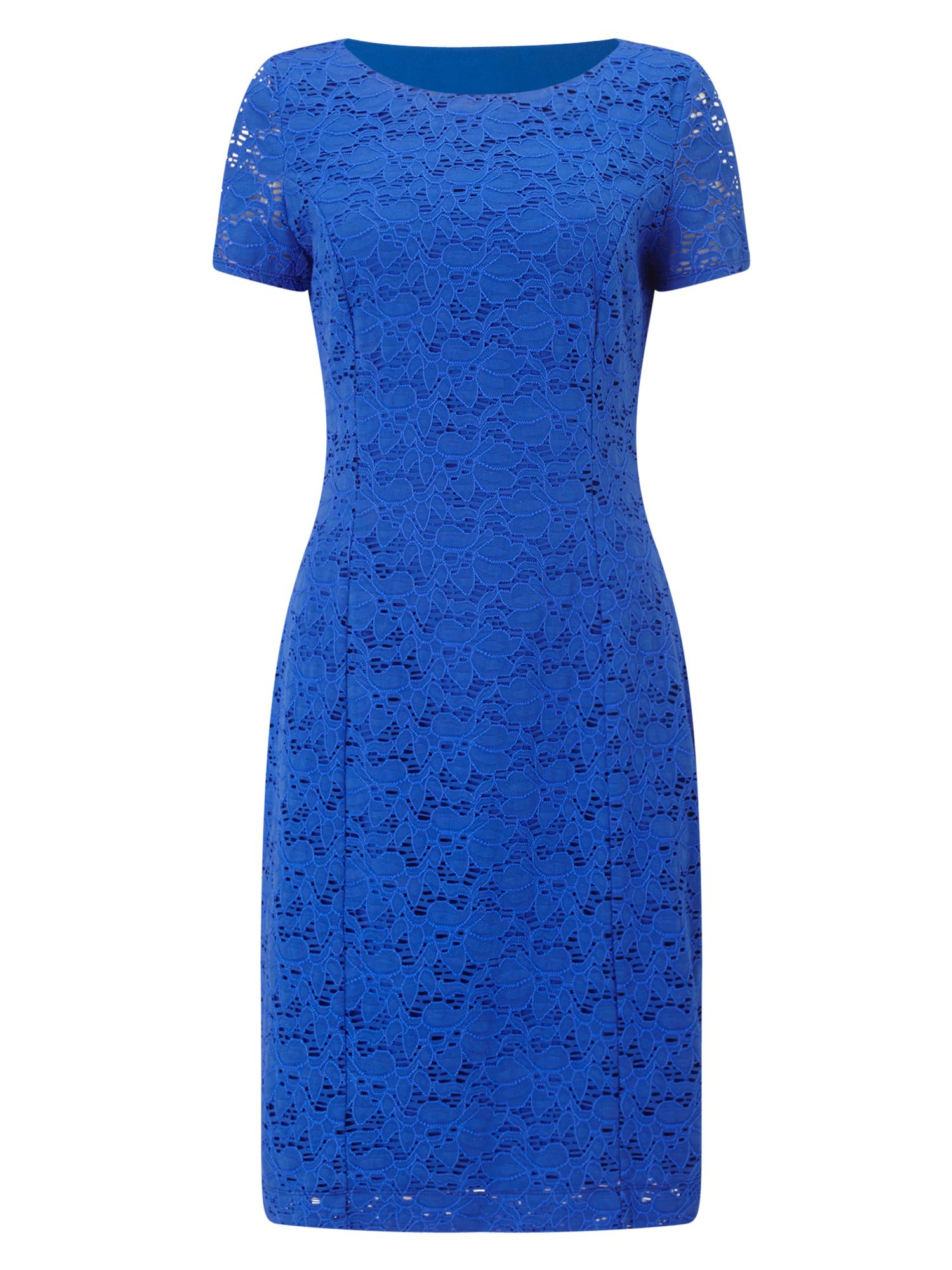 Precis Petite Petite Jessie Lace Dress, Blue