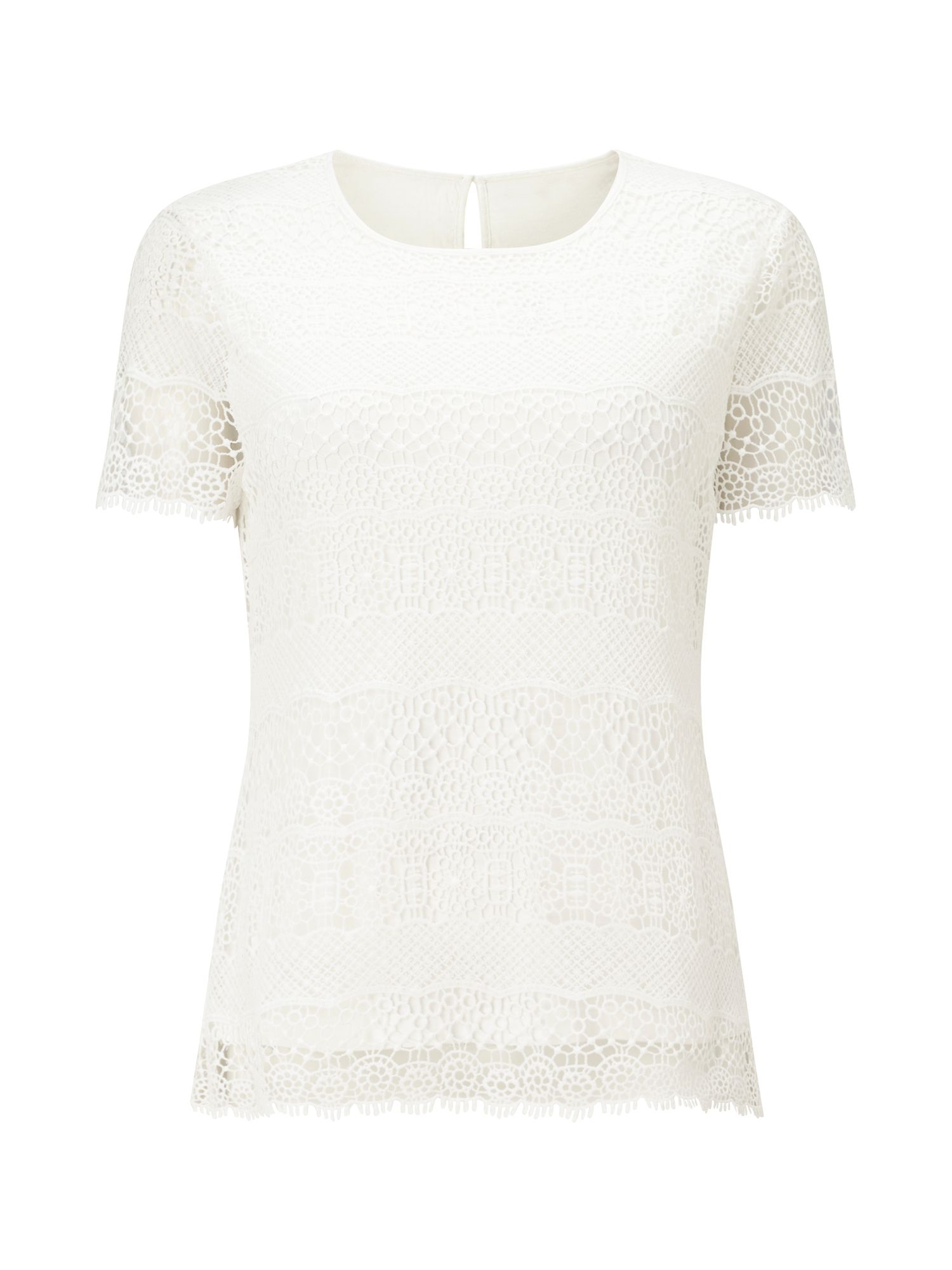 Precis Petite Petite Cotton Stripe Lace Top, White