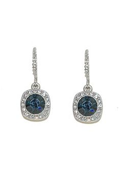 Silver montana crystal round earrings