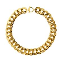 Monet Gold double textured links necklace