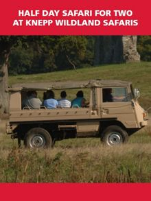 Red Letter Days Half Day Safari for Two at Knepp Wildland Safaris