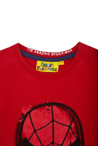 Fabric Flavours Boys Spider-Man face vintage wash t-shirt