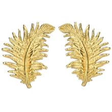 Dower & Hall Gold Feather Stud Earrings
